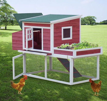 "Picture of 67"" Farmhouse Wooden Chicken Coop with Display Top, Run Area and Nesting Box"