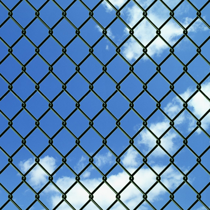 """Picture of Chain Fence 4' 9"""" x 49' 2"""" Green"""