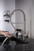 Picture of Kitchen Faucet with Pull Out Sprayer - Chrome